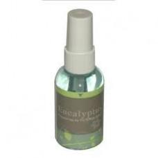 Fragrance Filter Queen Eucalyptus Spray Bottle 2oz Water Base